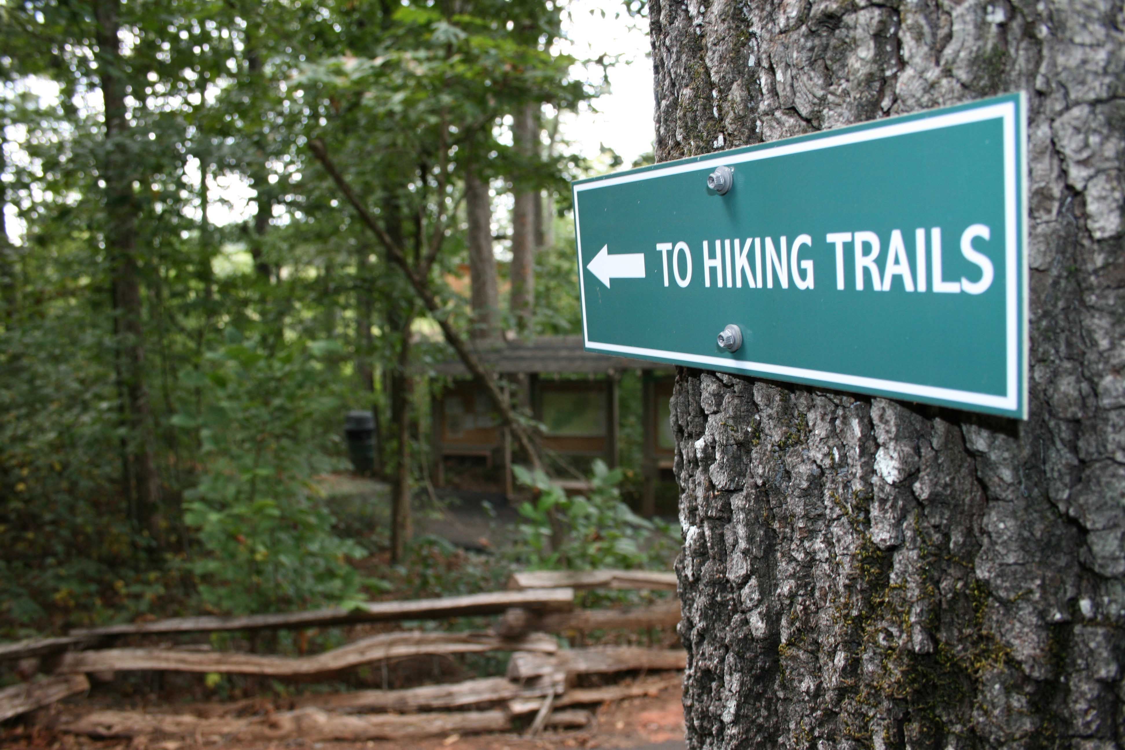 """Sign Pointing into woods titled """"To Hiking Trail"""""""